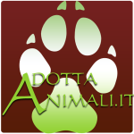 Adottanimali.it