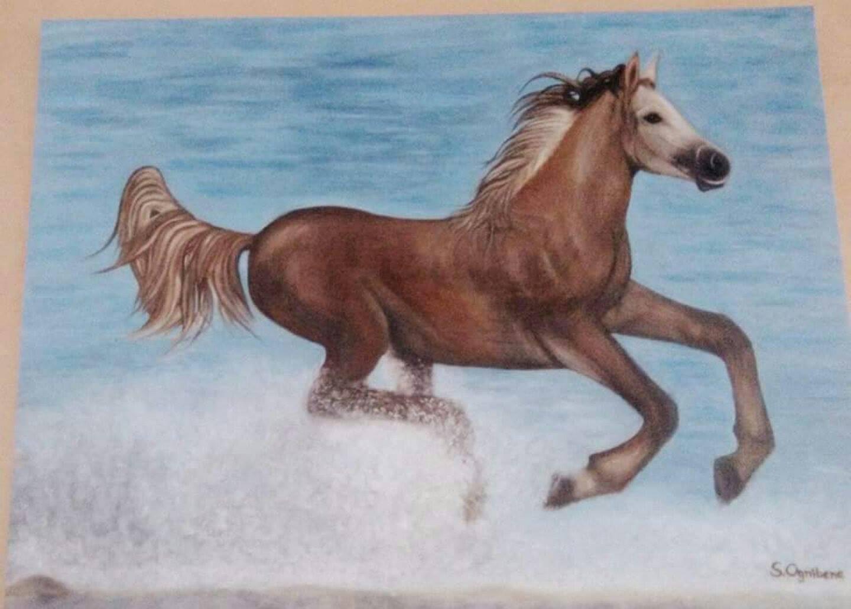 Quadri vendita online: Cavallo in acqua - MediaJob.eu - Vendita ...