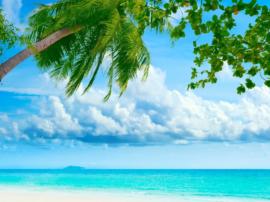 Sfondo pc desktop e mobile di spiaggia tropicale. Mediajob.eu - il sito d'arte e degli artisti.