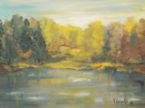 Dipinti nel tempo... scorcio della sponda del fiume