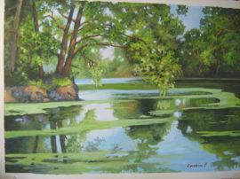 Mio dipinto a tempera 47 x 32.Specchio della natura
