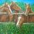 Cavalli. Dipinto quadro olio su tela. Artista Pinamaria Polcari.