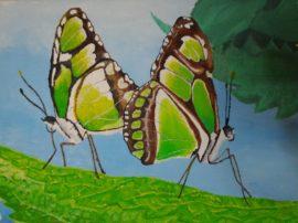 Farfalle concorso pittura Ardea. Olio su tela. Artisti Cammisa e Serena Bonanno