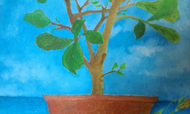 Pianta di limone con fiori di zucca - Olio su tela. Pittore Cammisa Fabio