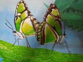 Farfalle-concorso-pittura-Ardea.-Olio-su-tela.-Artisti-Cammisa-e-Serena-Bonanno-270x202