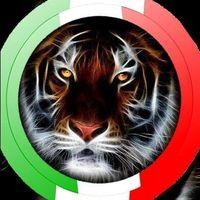 Foto del profilo di Gianfranco Maglione